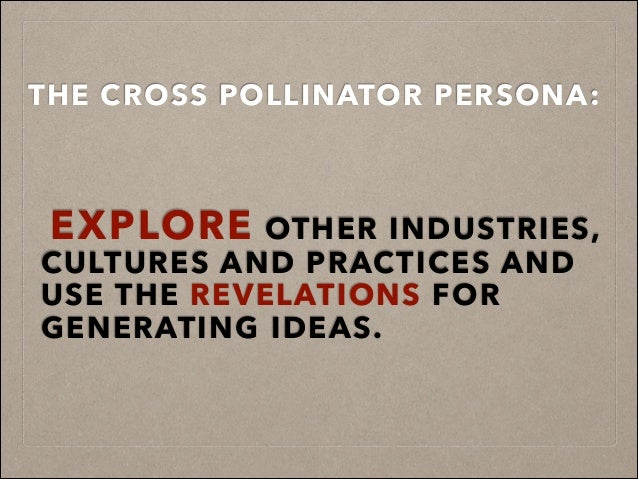 THE CROSS POLLINATOR PERSONA: ! ! ! EXPLORE OTHER INDUSTRIES, CULTURES AND PRACTICES AND USE THE REVELATIONS FOR GENERATIN...