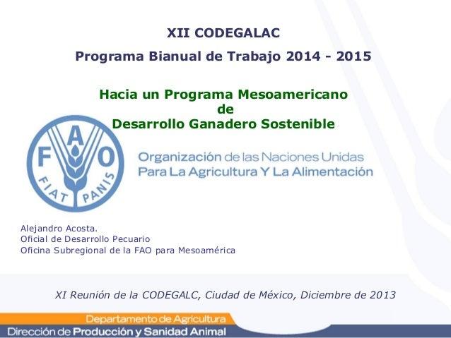 XII CODEGALAC Programa Bianual de Trabajo 2014 - 2015 Hacia un Programa Mesoamericano de Desarrollo Ganadero Sostenible  A...