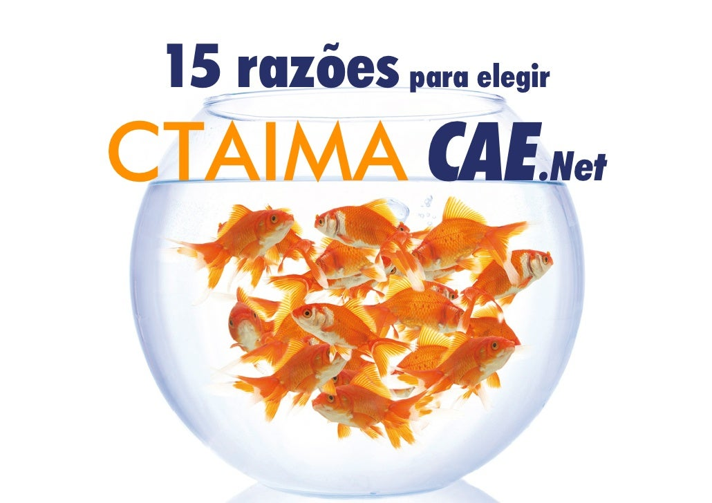 15 razões para elegirCTAIMA CAE.Net