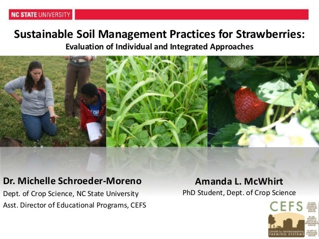 Amanda L. McWhirt PhD Student, Dept. of Crop Science Sustainable Soil Management Practices for Strawberries: Evaluation of...