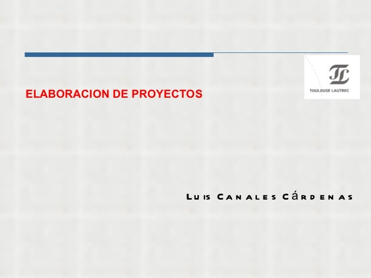 ELABORACION DE PROYECTOS Luis Canales Cárdenas