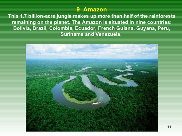 9  Amazon This 1.7 billion-acre jungle makes up more than half of the rainforests remaining on the planet. The Amazon is s...