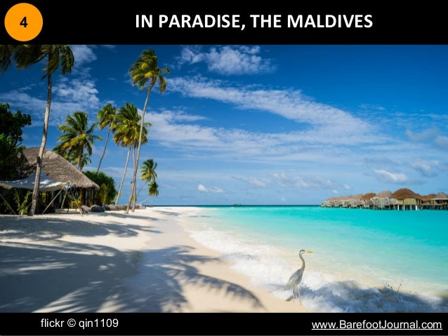 4 IN PARADISE, THE MALDIVES flickr © qin1109 www.BarefootJournal.com
