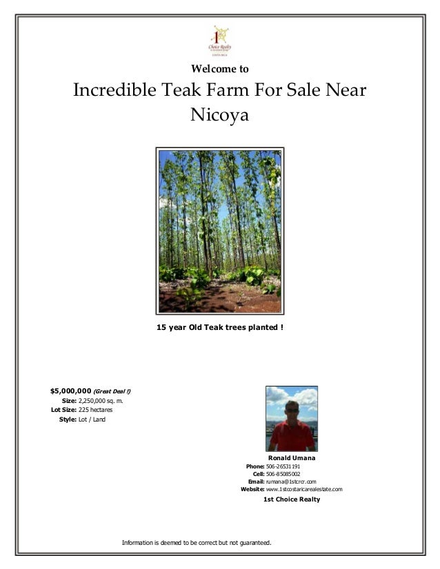 Welcome to        Incredible Teak Farm For Sale Near                      Nicoya                                     15 ye...