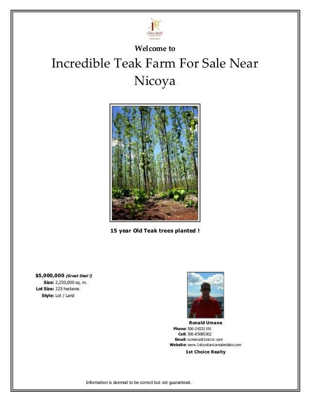 Welcome to        Incredible Teak Farm For Sale Near                      Nicoya                                     15 ye...