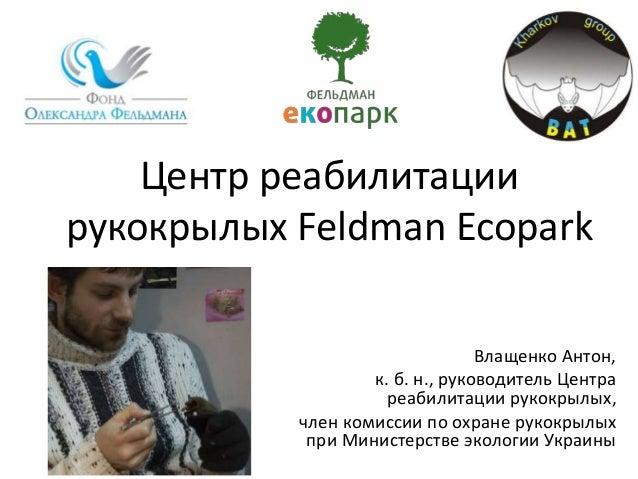 Центр реабилитации рукокрылых Feldman Ecopark Влащенко Антон, к. б. н., руководитель Центра реабилитации рукокрылых, член ...