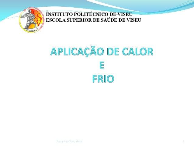 INSTITUTO POLITÉCNICO DE VISEU ESCOLA SUPERIOR DE SAÚDE DE VISEU  Amadeu Gonçalves  1