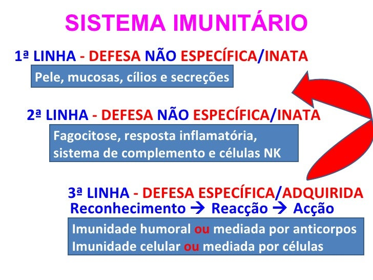 3ª LINHA  - DEFESA ESPECÍFICA / ADQUIRIDA  1ª LINHA  - DEFESA  NÃO  ESPECÍFICA / INATA  2ª LINHA  - DEFESA  NÃO  ESPECÍFIC...