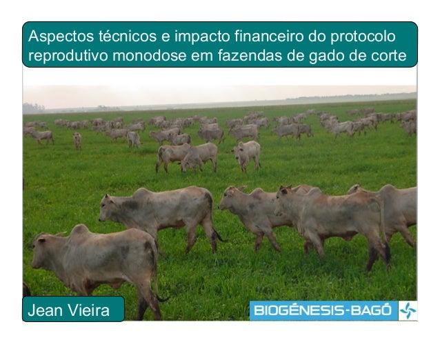 Aspectos técnicos e impacto financeiro do protocoloreprodutivo monodose em fazendas de gado de corteJean Vieira