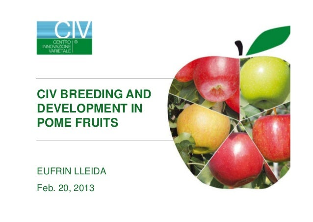 EUFRIN LLEIDA Feb. 20, 2013 CIV BREEDING AND DEVELOPMENT IN POME FRUITS
