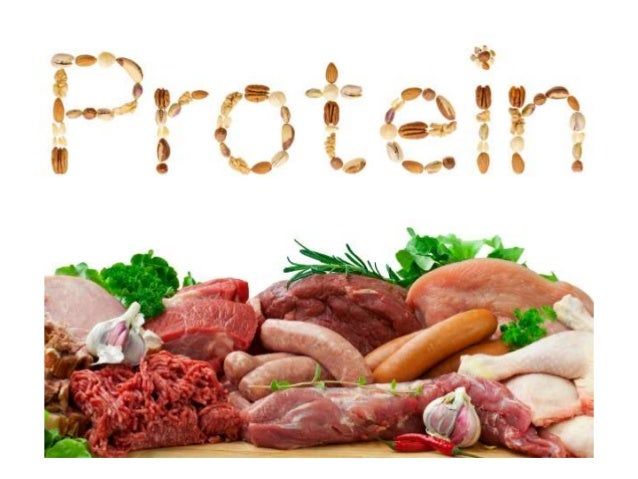 High Protein Rich Foods List