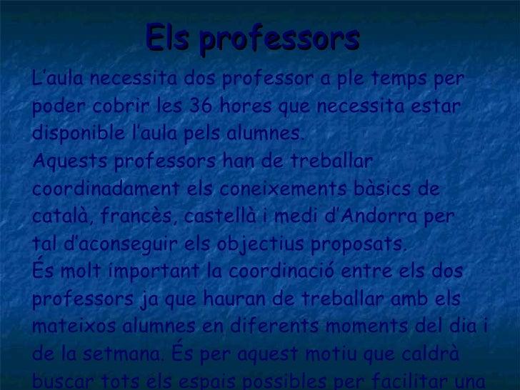 Els professors <ul><li>L'aula necessita dos professor a ple temps per </li></ul><ul><li>poder cobrir les 36 hores que nece...