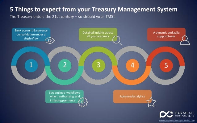 5 Things To Expect From Your Treasury Management System Tms