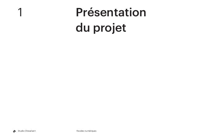 Fossiles numériquesStudio Chevalvert 1Présentation du projet