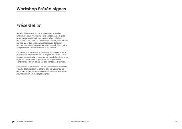 5Fossiles numériquesStudio Chevalvert Présentation À partir d'une application proposée par le studio Chevalvert sous Proce...