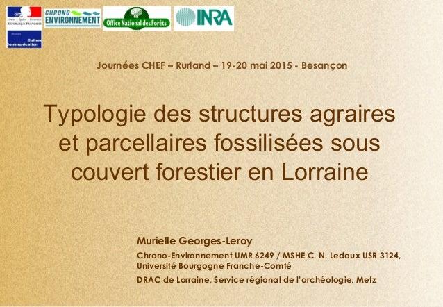 Typologie des structures agraires et parcellaires fossilisées sous couvert forestier en Lorraine Journées CHEF – Rurland –...