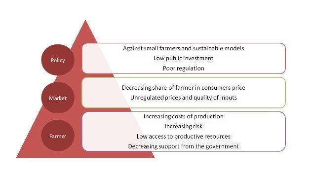 Farmer Market Policy