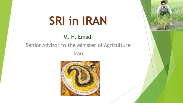 SRI in IRAN M. H. Emadi Senior Advisor to the Minister of Agriculture Iran