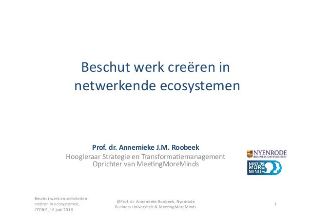 Beschut  werk  creëren  in       netwerkende  ecosystemen   Prof.  dr.  Annemieke  J.M.  Roobeek ...