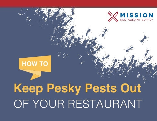 Keep Pesky Pests Out OF YOUR RESTAURANT HOW TO