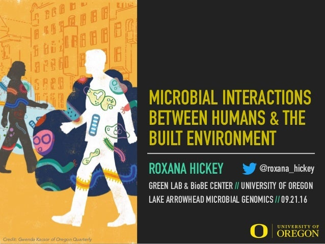 MICROBIAL INTERACTIONS BETWEEN HUMANS & THE BUILT ENVIRONMENT ROXANA HICKEY GREEN LAB & BioBE CENTER // UNIVERSITY OF OREG...