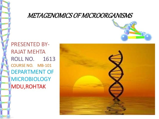 METAGENOMICSOFMICROORGANISMS PRESENTED BY- RAJAT MEHTA ROLL NO. 1613 COURSE NO. MB-101 DEPARTMENT OF MICROBIOLOGY MDU,ROHT...
