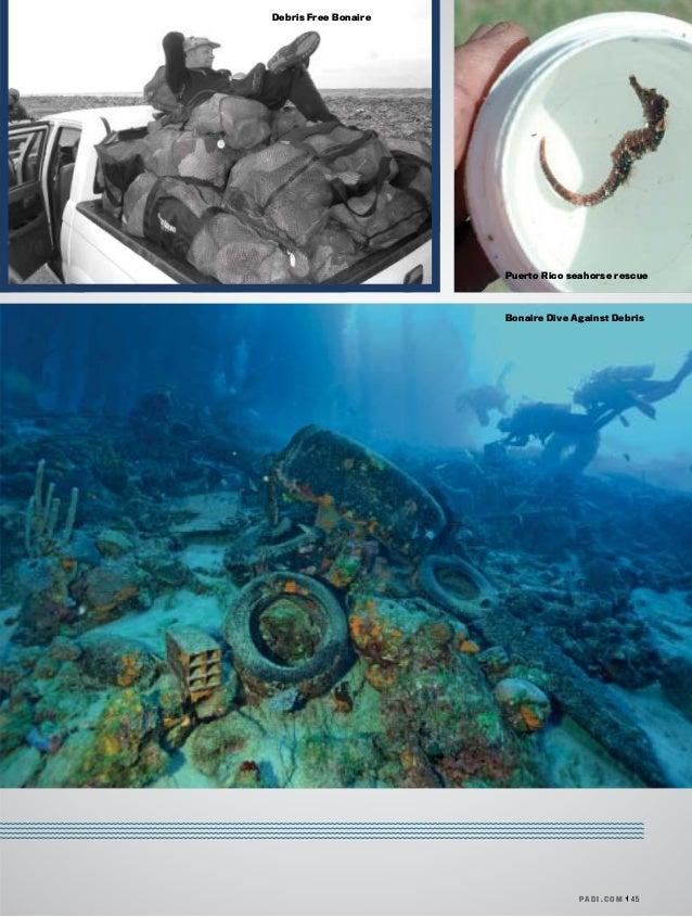 PA D I . C O M 45 Debris Free Bonaire Bonaire Dive Against Debris Puerto Rico seahorse rescue