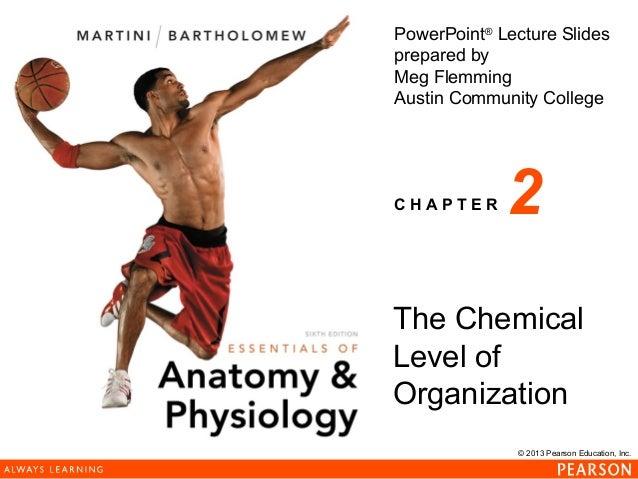 © 2013 Pearson Education, Inc. PowerPoint® Lecture Slides prepared by Meg Flemming Austin Community College C H A P T E R ...