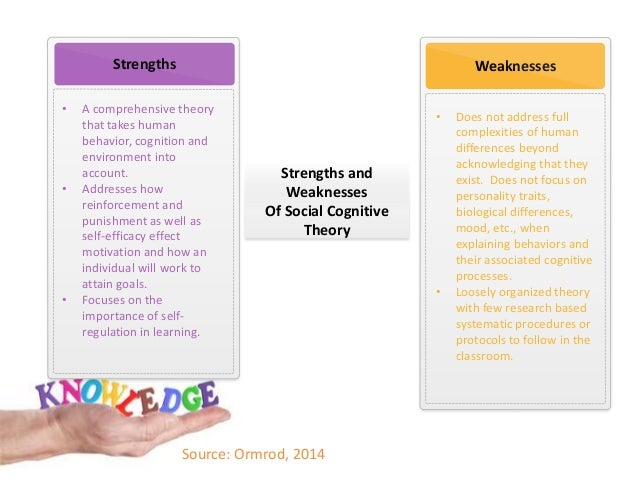 advantages and disadvantages of behavioural model