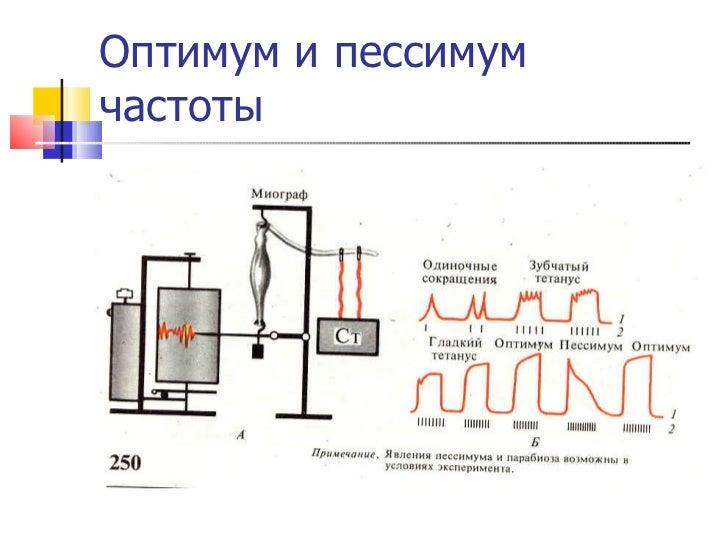 Оптимум и пессимум частоты