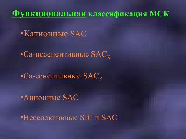 Функциональная  классификация МСК <ul><li>Катионные   SAC </li></ul><ul><li>Ca- несенситивные SAC K </li></ul><ul><li>Ca-с...
