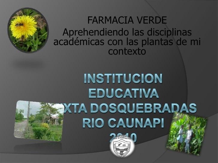 FARMACIA VERDE <br />Aprehendiendo las disciplinas académicas con las plantas de mi contexto<br />INSTITUCION EDUCATIVA MI...