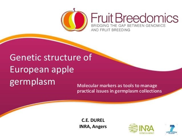 Genetic structure of European apple germplasm Molecular markers as tools to manage practical issues in germplasm collectio...