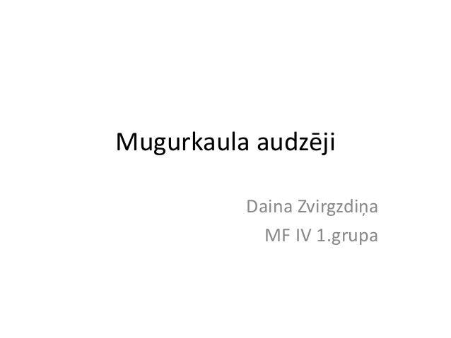 Mugurkaula audzēji          Daina Zvirgzdiņa            MF IV 1.grupa