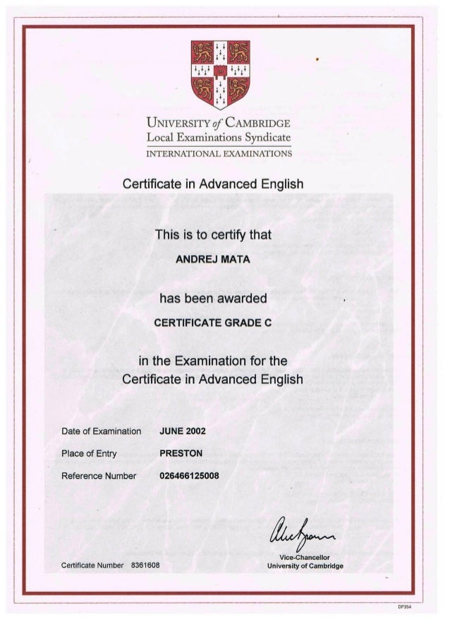 (PDF) Cambridge Certificate in Advanced English