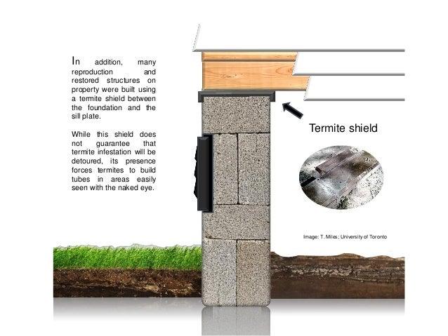 Preserving history subterranean termite prevention in for Sill plate definition