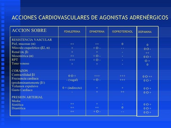 Receptores adrenergicos y colinergicos
