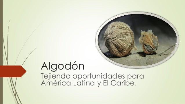 Algodón Tejiendo oportunidades para América Latina y El Caribe.