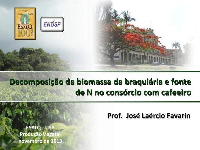 Decomposição da biomassa da braquiária e fonte de N no consórcio com cafeeiro Prof. José Laércio Favarin ESALQ - USP Produ...