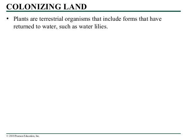 © 2010 Pearson Education, Inc. COLONIZING LAND • Plants are terrestrial organisms that include forms that have returned to...