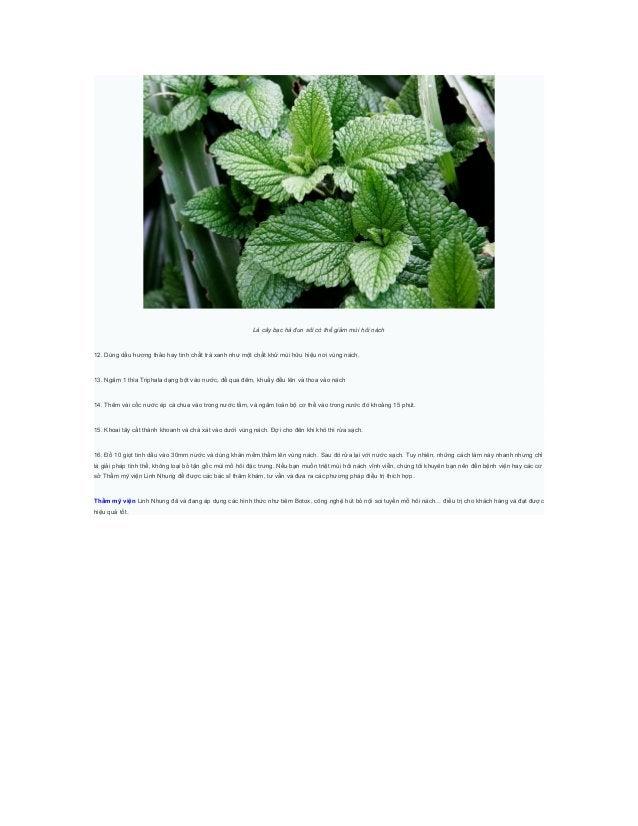 Lá cây bạc hà đun sôi có thể giảm mùi hôi nách12. Dùng dầu hương thảo hay tinh chất trà xanh như một chất khử mùi hữu hiệu...