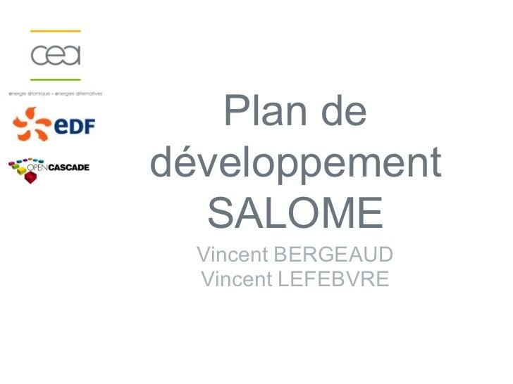 Plan dedéveloppement  SALOME  Vincent BERGEAUD  Vincent LEFEBVRE