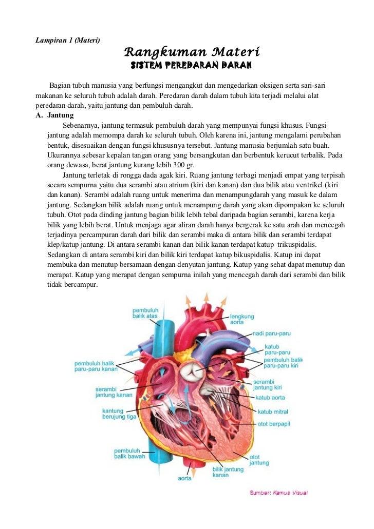 16 Rpp Ipa Peredaran Darah 5a