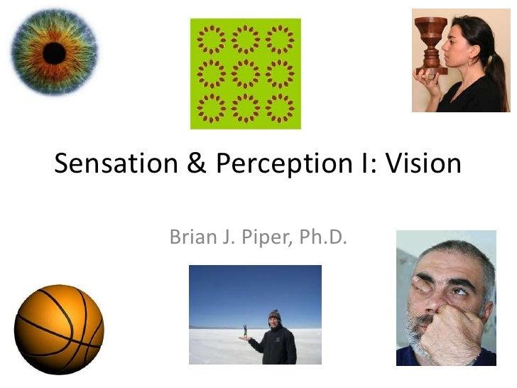 Sensation & Perception I: Vision        Brian J. Piper, Ph.D.