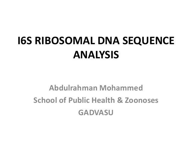 I6S RIBOSOMAL DNA SEQUENCE  ANALYSIS  Abdulrahman Mohammed  School of Public Health & Zoonoses  GADVASU