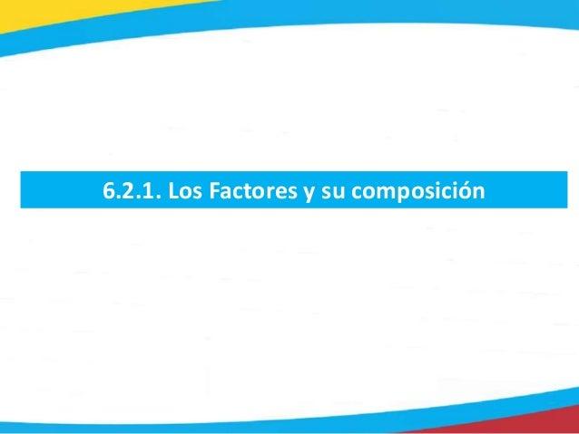 6.2.1. Los Factores y su composición