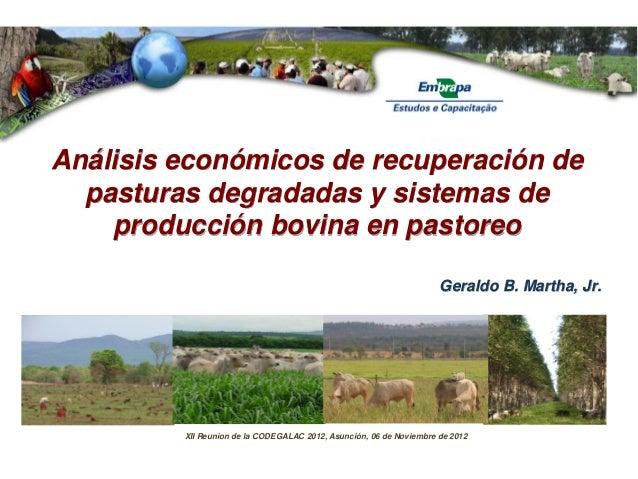 Geraldo B. Martha, Jr. Análisis económicos de recuperación de pasturas degradadas y sistemas de producción bovina en pasto...