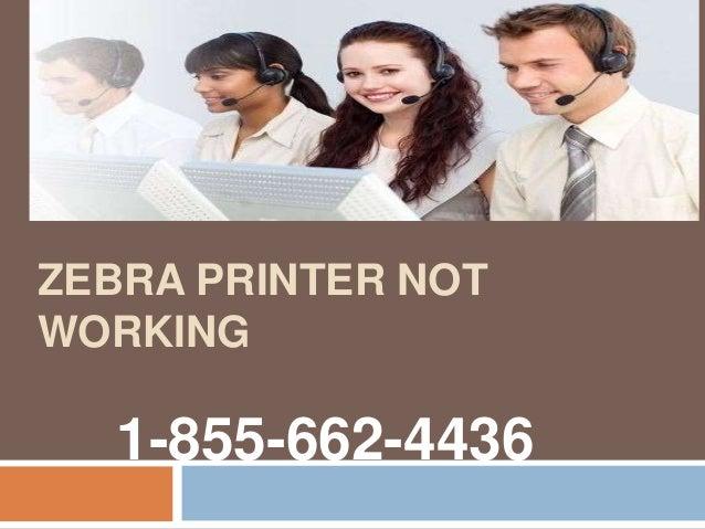 ZEBRA PRINTER NOT WORKING 1-855-662-4436
