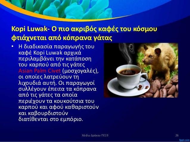 2788e53621ab Kopi Luwak- Ο πιο ακριβός καφές του κόσμου φτιάχνεται από κόπρανα γάτας ...