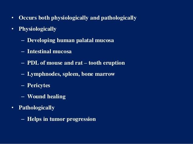 • Occurs both physiologically and pathologically • Physiologically – Developing human palatal mucosa – Intestinal mucosa –...